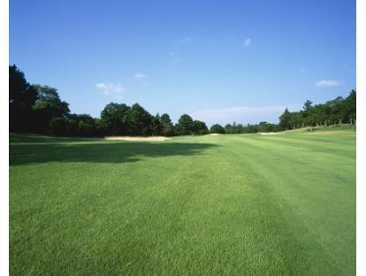 ウッド クラブ ローズ ゴルフ